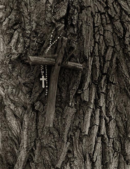 15CH.Tree-Cross