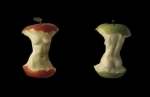 apple-fruit-art-body-cool-Favim.com-542189
