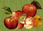 article-new_ehow_images_a04_tr_p2_johnny-appleseed-art-activities-800x800