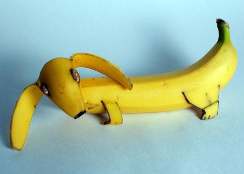 banana-dog