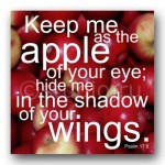 inspirational_art_-_apple_of_your_eye_59dd80ff