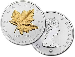 kanadski-javor-srebrni-u-boji