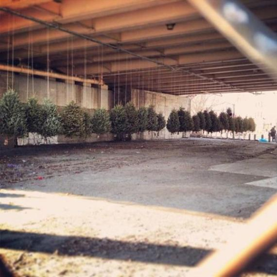 Suspended forest, a public art installation made with recycled christmas trees Michael Neff