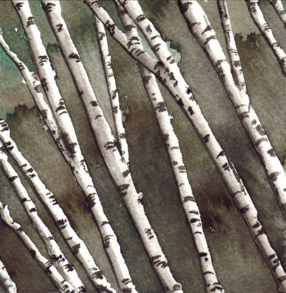 White-birch-grove_2-1001x1024
