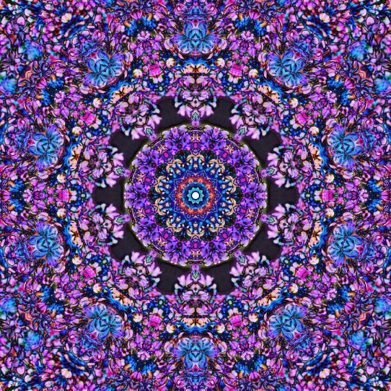 abstract-lilac-mandala-7-cindy-boyd