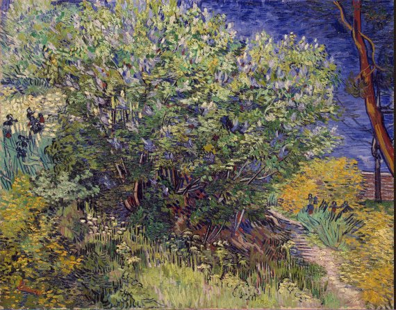 Gogh_Vincent_van-ZZZ-Lilac_Bush