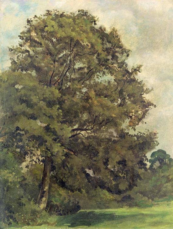 study-of-an-ash-tree-lionel-constable