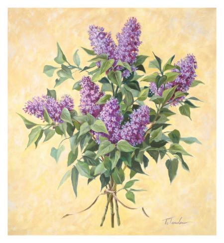 telander-lilac-season-ii_i-G-51-5122-VSAEG00Z