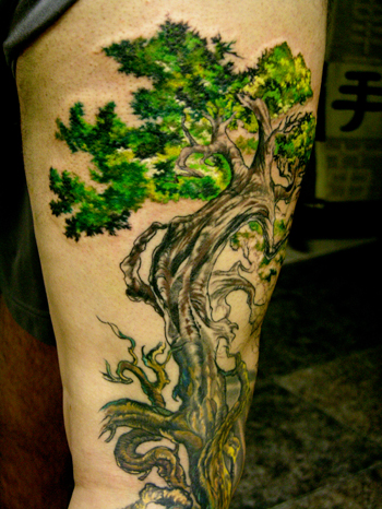 Tree Tattoo Designs 4