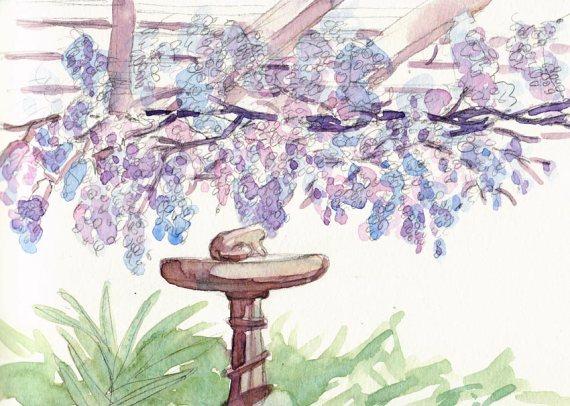 22090420-wisteria