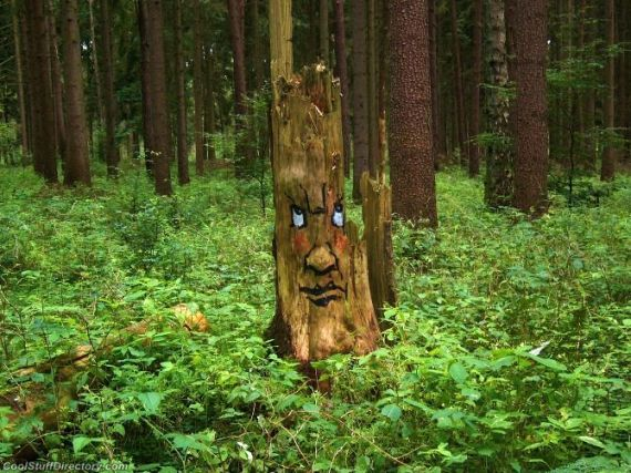 Amazing Tree Wood Art by Duo Zonenkinder (15)