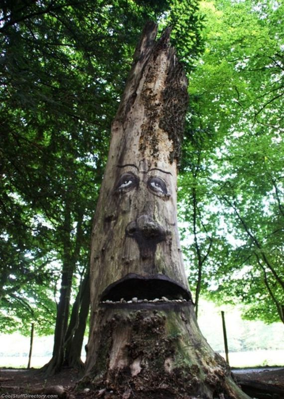 Amazing Tree Wood Art by Duo Zonenkinder (8)