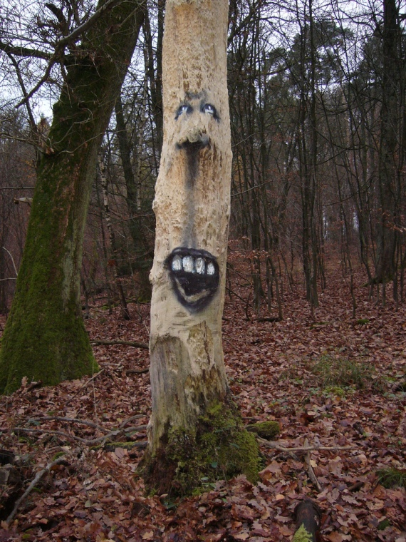 Amazing Tree Wood Art by Duo Zonenkinder2
