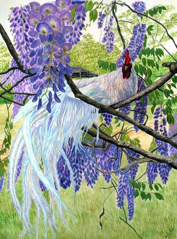 white-rooster-in-wisteria-amanda-stewart