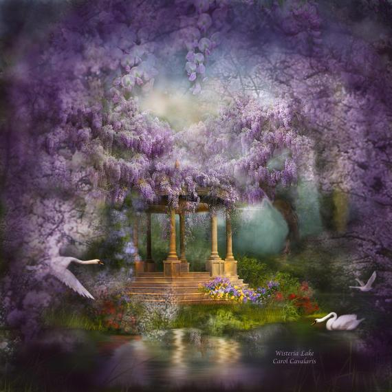 wisteria-lake-carol-cavalaris