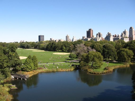 800px-Vista_of_Great_Lawn_from_Belvedere_Castle
