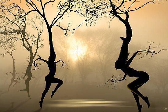 alberi-danzanti