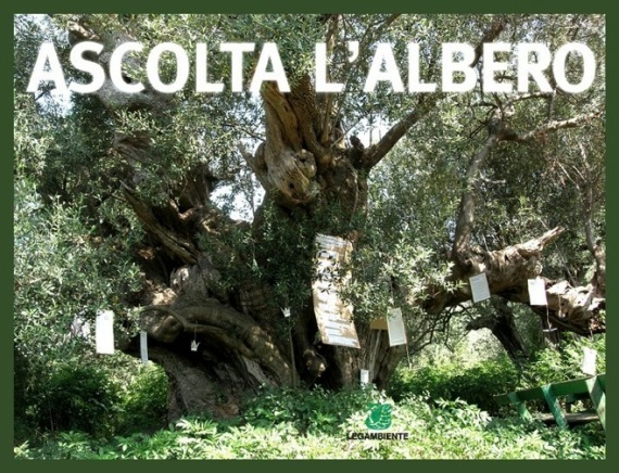 ascoltAlbero2