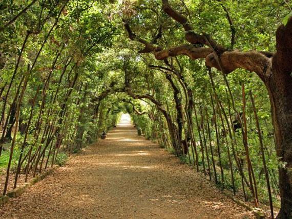 boboli-gardens-florence
