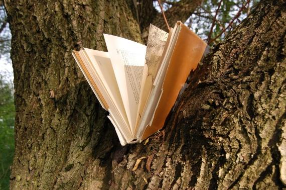 book_versus_tree