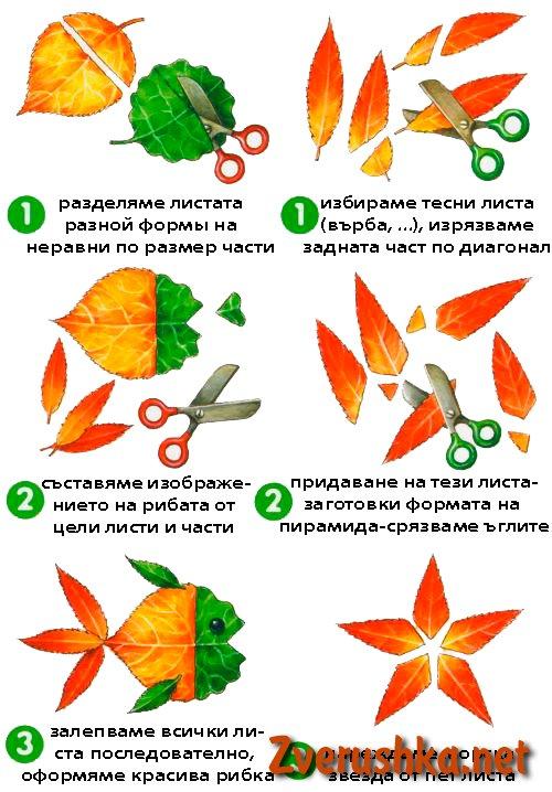1313133568_applikaciya-iz-listev3