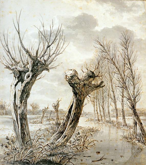 landscape-in-winter