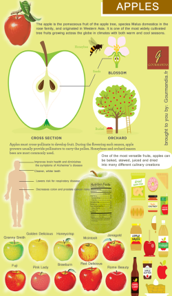 an-apple-a-day-keeps-the-doctor-away_51592ece06ad2