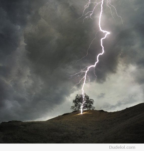 Dont-stand-under-a-tree-in-a-storm