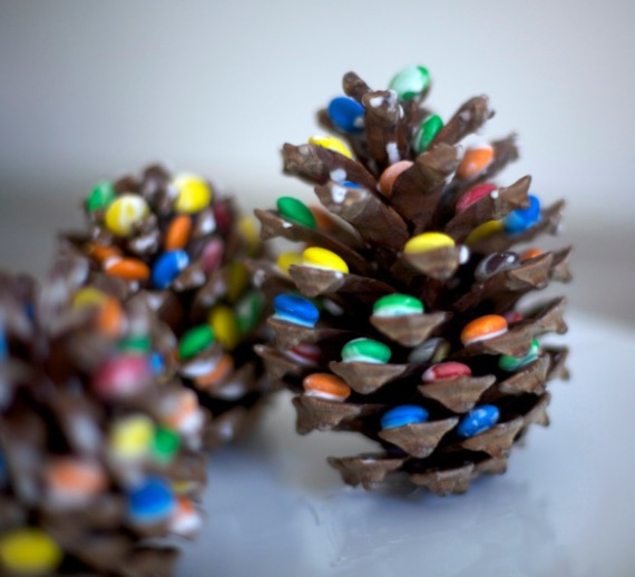 the-world_s-top-10-best-things-to-do-with-pine-cones-10