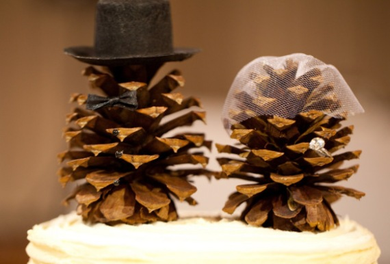 the-world_s-top-10-best-things-to-do-with-pine-cones-4