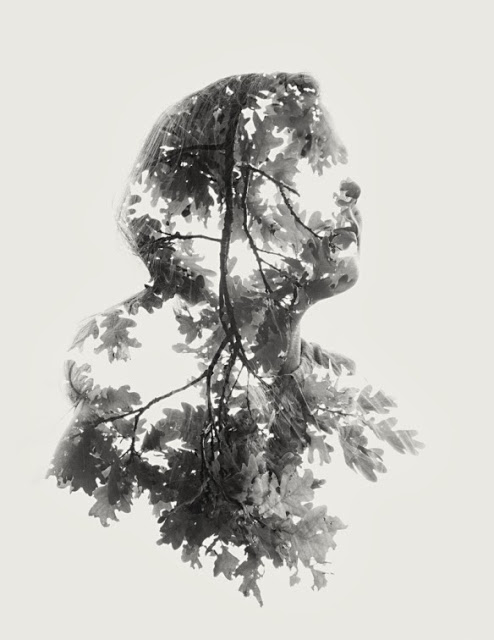 christofferrelander045