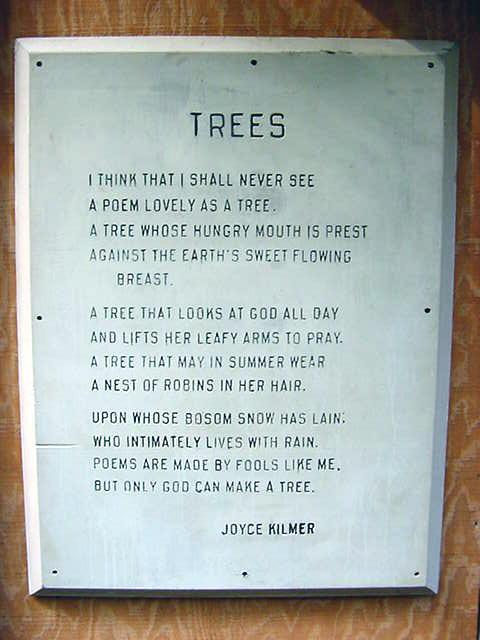 trees_poem