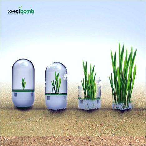 seedbomb2