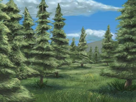 Spruce_Woods-Main