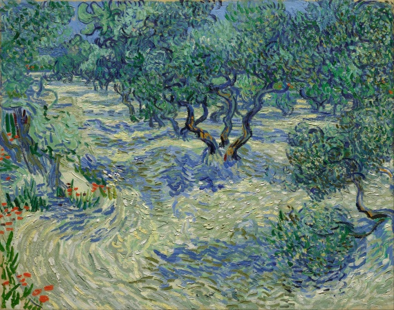 Vincent_van_Gogh_-_Olive_Orchard_-_Google_Art_Project