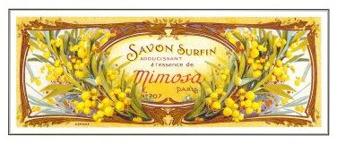 Mimosa soap, art.com