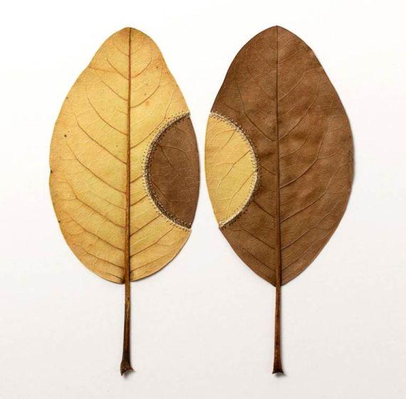 susanna-bauer-leaf-art-12